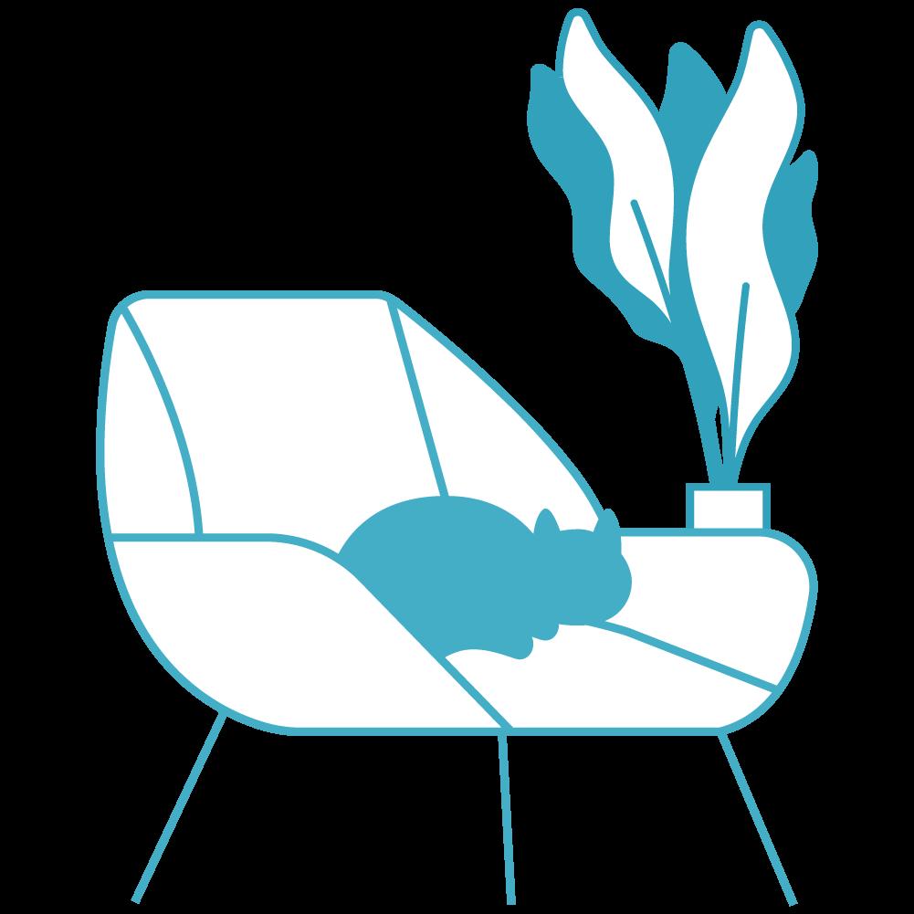 illustration-plante-chat